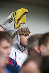 A Crystal Palace fan wearing an eagle mask at Hillsborough before his team's crucial last-day relegation match against Sheffield Wednesday. The match ended in a 2-2 draw which meant Wednesday were relegated to League 1. Crystal Palace remained in the Championship despite having been deducted 10 points for entering administration during the season.
