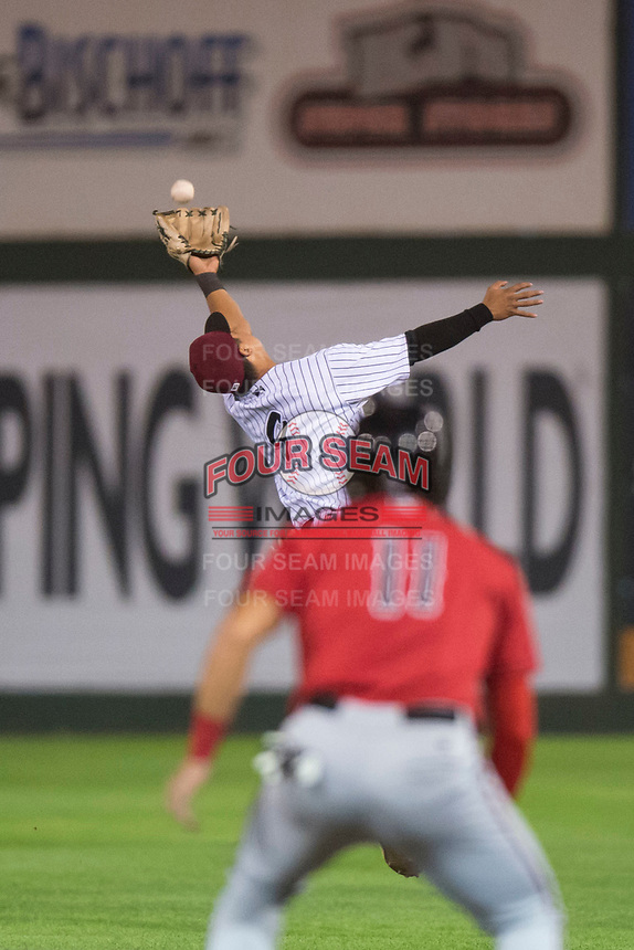 Idaho Falls Chukars second baseman Kyle Kasser (9) makes a leaping catch as Leonardo Seminati (11) looks on during a Pioneer League game against the Billings Mustangs at Melaleuca Field on August 22, 2018 in Idaho Falls, Idaho. The Idaho Falls Chukars defeated the Billings Mustangs by a score of 5-3. (Zachary Lucy/Four Seam Images)