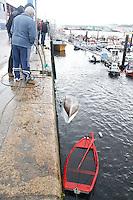 fecha:09-11-2010 En el puerto de Burela, Lugo. imagenes de algunos botes y la foto del bote del pescador fallecido. foto:EFE/eliseo trigo