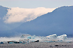 Alaska, Prince William Sound, Columbia Bay, Columbia Glacier, icebergs, bad weather arriving, adiabatic wind, cold air defined by the cloud descending the ridge to join the cold air arriving from the Sound (right). means the temperature is dropping and the kayaks are at risk,.