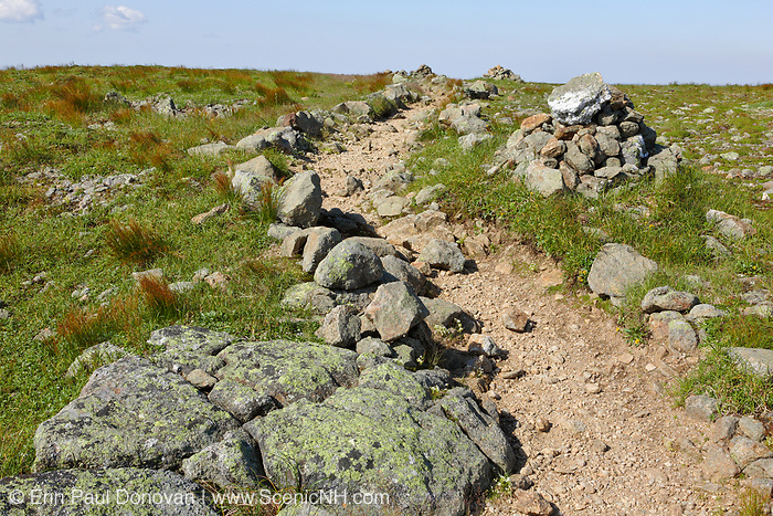 Appalachian Trail - Crawford Path near Mount Franklin during the summer months in the White Mountains, New Hampshire USA. Scree walls are built on the edge of trails to discourage hikers from going off the trail. Building these small walls helps protect the fragile alpine habitat.