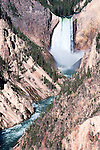Lower Falls on the Yellowstone River in the Grand Canyon of the Yellowstone.  At 308 feet, Lower Falls is the highest and most dramatic falls in the park.  Seen here from Artist Point.  Yellowstone National Park, the first National Park in the world, still enthrals over three million visitors a year with it's geothermal features,wildlife,  rugged mountains, deep canyons and stunning ecosystem.