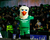 9th February 2018, Galway Sportsground, Galway, Ireland; Guinness Pro14 rugby, Connacht versus Ospreys; The Connacht mascot