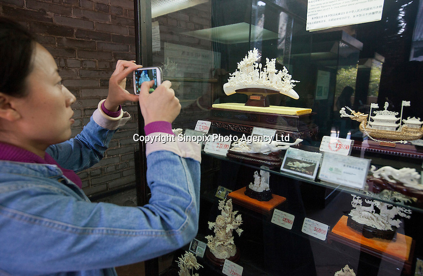 A Chinese woman takes a photo of Ivory on sale at Chen Clan Academy, an officially licenced retail outlet, as authorised by China's State Forestry Administration, Li Wan District, Guangzhou, Guangdong Province, China, 28 November 2013. <br /> <br /> Photo by Alex Hofford / Sinopix