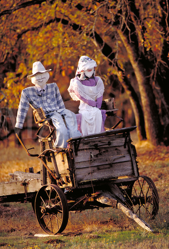 Stuffed figures (man and woman) sitting in old wagon. Shady Cove Oregon USA.