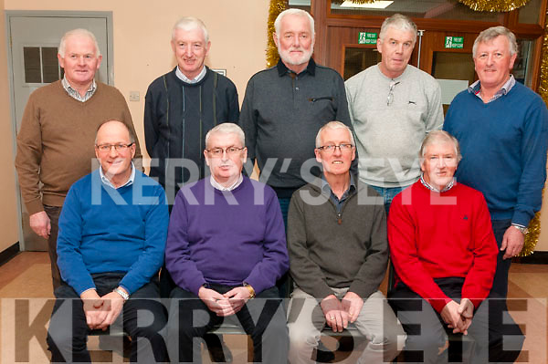 Retirement Group : Nine workers from SSE plant, Tarbert who retired after more than 35 years service each with the company. Front : Teddy Keane, John O'Sullivan, Michsael Lanigan & Tom O'Connor. Back : Thomas Culhane, Denis Mullane, Michael Barrett, Tom Reidy & Pat Carmody.