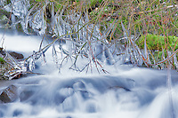 Ice on edge of Wahkeena Creek. Columbia River Gorge National Scenic Area. Oregon