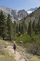 A hiker makes their way through the Sierra Nevada Mountain Range near Bishop, California