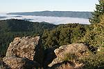 Santa Cruz Mountains from Panorama ridge in Castle Rock State Park