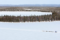 Aerial of Judy Currier's team traveling on Farewell Lake between Rohn and Nikolai during the 2010 Iditarod