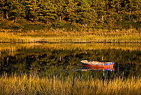 Rowboat on still water, Wellfleet, Cape Cod, MA