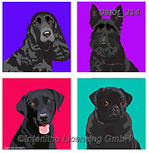Kate, CUTE ANIMALS, LUSTIGE TIERE, ANIMALITOS DIVERTIDOS, paintings+++++Graphic cats and dogs 2,GBKM314,#ac#, EVERYDAY ,dogs,dog ,puzzle,puzzles