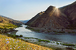 The Lower Salmon River, central Idaho
