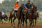 ARCADIA, CA  JANUARY 06:#6 McKinzie, ridden by Mike Smith, in the post parade of the Sham Stakes (Grade lll) on January 6, 2018, at Santa Anita Park in Arcadia, CA. (Photo by Casey Phillips/ Eclipse Sportswire/ Getty Images)