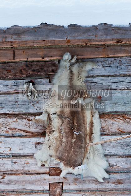 Europe/Finlande/Laponie/ Env de Levi: Levin Lapinkylä est une ferme traditionnelle le long de la Ounasjoki -C'est:La ferme des rennes _ Peau de Renne séchant