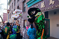 Lion Dance, Chinese New Year 2015, Chinatown, Seattle, WA, USA.