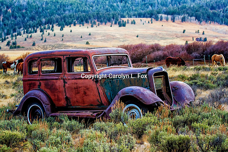 An old car sits abandoned in a field in Montana.  Horses can be seen in the background.
