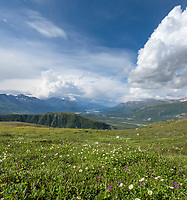 Tundra view in the Alaska Range mountains.