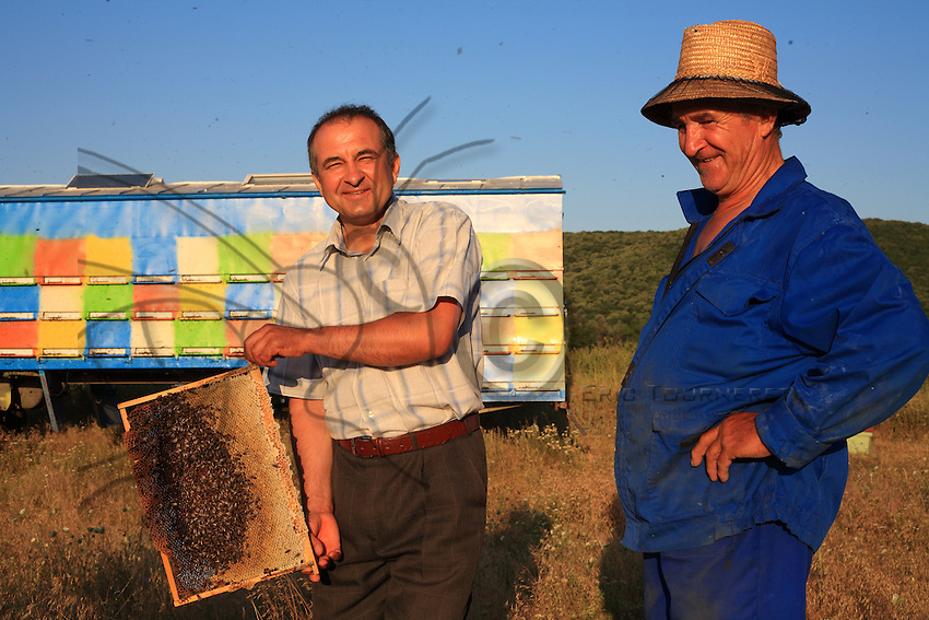 Paolo Balasa from Salcioara and Gheorghe Cazan have opened a hive and show, at the back of the hive, a frame of bees.