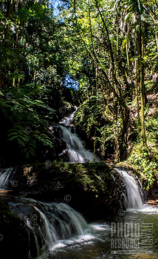 Onomea Waterfalls at the Hawaii Tropical Botanical Garden, Hamakua coast, Big Island of Hawai'i.