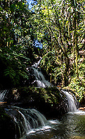 Onomea Waterfalls at the Hawaii Tropical Botanical Garden, Hamakua coast, Big Island of Hawai'i.