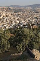 Afrique/Afrique du Nord/Maroc/Fèz: Médina de Fèz-El-Bali vue depuis le fort ou borj sud