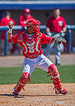 28 February 2016: Washington Nationals catcher Pedro Severino in action during an inter-squad pre-season Spring Training game at Space Coast Stadium in Viera, Florida. Mandatory Credit: Ed Wolfstein Photo *** RAW (NEF) Image File Available ***
