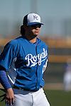 Luis Mendoza of the Royals Of Kansas City.during the  Spring Trainig  2013 en Arizona..(©NortePhoto)