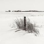 FENCE POST #blackandwhite #monochrome #winter #wisconsin @midewestmemoir