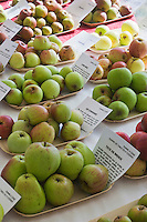 Europe/France/Normandie/Basse-Normandie/50/Batenton: Maison de la Pomme et de la Poire  - Exposition de Pommes à Cidre  //    / France, Manche, Batenton, House of the Apple and Pear Cider apples Exhibition