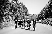 morning course recon with Team Mitchelton-Scott<br /> <br /> Stage 3 (Team Time Trial): Cholet > Cholet (35km)<br /> <br /> 105th Tour de France 2018<br /> ©kramon