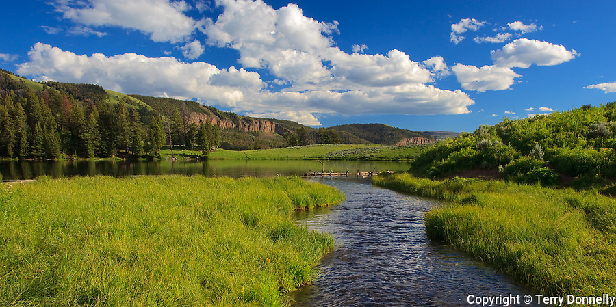 Yellowstone National Park, WY<br /> Trout Creek flowing in to Trout Lake