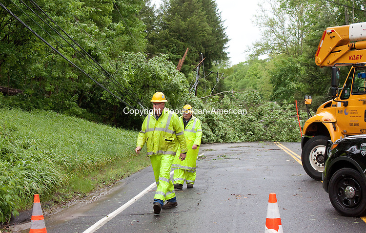 SOUTHBURY CT- MAY 14 2014 052814DA06-  Vehicles had to be diverted from Rt. 172 to Flood Bridge Road in Southbury Wednesday morning after a tree fell across both lanes during Tuesday evenings storm.<br /> Darlene Douty Republican American
