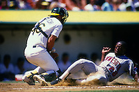 OAKLAND, CA - Al Newman of the Minnesota Twins slides home safely as Oakland Athletics catcher Terry Steinbach fields the throw during a game at the Oakland Coliseum in Oakland, California in 1987. Photo by Brad Mangin