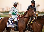 HALLANDALE BEACH, FL - March 3: Promises Fulfilled parades onto the track jockey Irad Ortiz for trainer Dale Romans prior to the Xpressbet Fountain of Youth Stakes (Grade II) at Gulfstream on March 3, 2018 in Hallandale Beach, FL. (Photo by Carson Dennis/Eclipse Sportswire/Getty Images.)