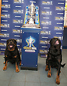 Two of the clients dogs stand guard over the Scottish Cup at William Hill's Bannockburn Road, Stirling office.
