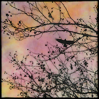 Mixed media encaustic painting with photo transfer of bird in branches with berries