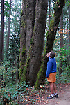 hiker in Forest Park in Portland