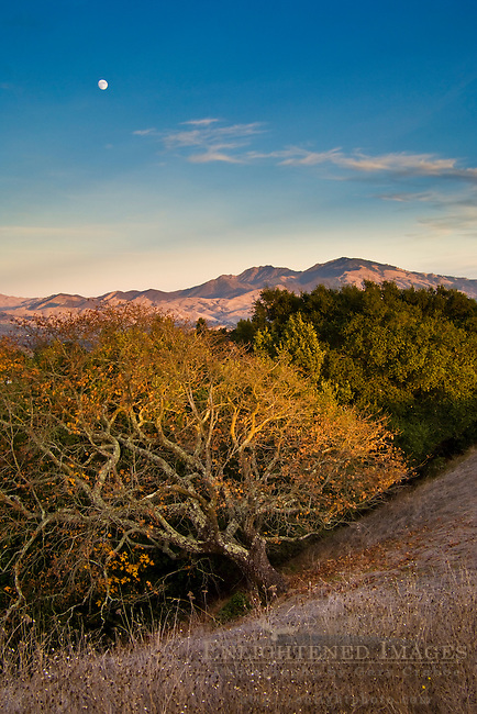 Moon over Mount Diablo at sunset as seen from Briones Regional Park, Contra Costa County, California