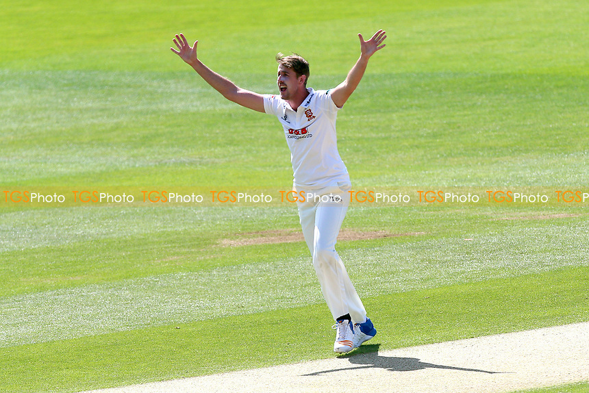 Matt Quinn of Essex with an appeal for a wicket during Essex CCC vs Hampshire CCC, Specsavers County Championship Division 1 Cricket at The Cloudfm County Ground on 21st May 2017