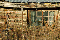 Relic log cabin in the mining community of Nolan, near Wiseman, Alaska