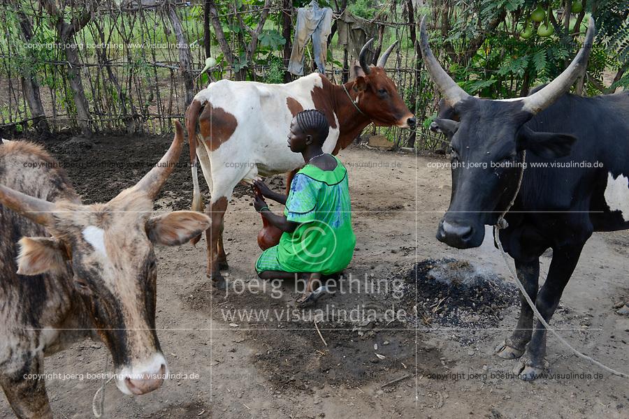 ETHIOPIA, Gambela, region Itang, Nuer village Pilual, woman milking the cows / AETHIOPIEN, Gambela, Region Itang, Dorf Pilual der Ethnie NUER, Hof von Herr Mun Kunen und Frau Neelam , sie sind vor dem Buergerkrieg aus dem Suedudan gefluechtet, Mutter von Bhan melkt die Kuehe