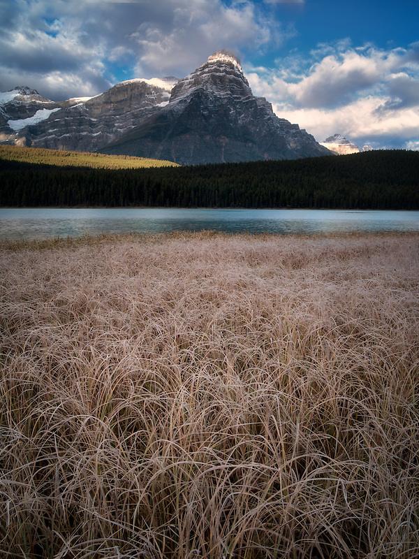 Waterfowl Lakes with frosty grasses and mountains. Banff National Park, Alberta Canada.