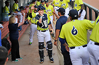 Catcher Hayden Senger (15) of the Columbia Fireflies high-fives teammates before a game against the Charleston RiverDogs on Saturday, April 6, 2019, at Segra Park in Columbia, South Carolina. Columbia won, 3-2. (Tom Priddy/Four Seam Images)