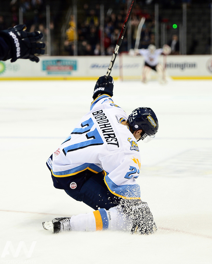 Oct 19, 2012; Toledo, OH, USA; Toledo Walleye left wing Terry Broadhurst (27) scores the game winning goal in overtime to defeat the Cincinnati Cyclones at Huntington Center: Mandatory Credit: Andrew Weber