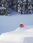 A stop sign at Lolo Pass Visitor Center is almost buried in deep snow in mid winter on the Montana / Idaho state line.