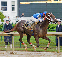 Smarty Jones wins the KY Derby. © 5/04 Barbara D. Livingston. All rights reserved.