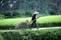 A farmer pulls a hand cart past fields in Guangxi, Yunnan Province, China.