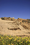 Israel, Southern Coastal Plain, the Canaanite fortifications of Ashkelon