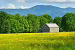 Barn and field near Stowe, VT